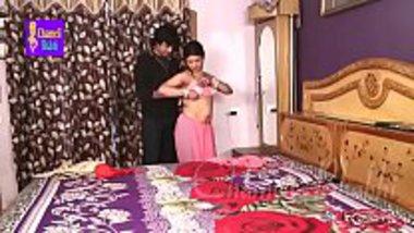 Hot Bhojpuri housewife romancing with the salesman