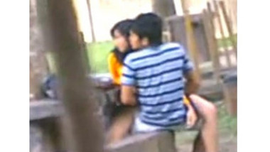 Desi Students Fucking in park Voyur Recorded